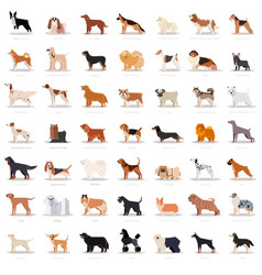 big set of flat dogicons vector image vector image