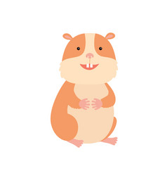 cute hamster on white vector image