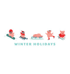 funny cartoon pigs winter sport activities vector image