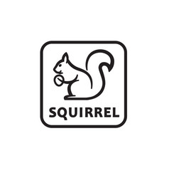 icon of squirrel vector image