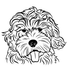 portrait a dog breed golden vector image