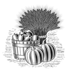 Retro harvest still life black and white vector image