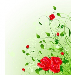 roses floral background vector image