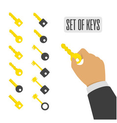 set keys vector image