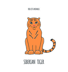 siberian tiger red list book animal gorgeous vector image