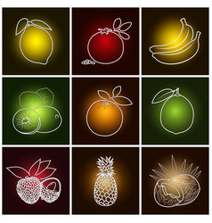 tropical fruit icons vector image