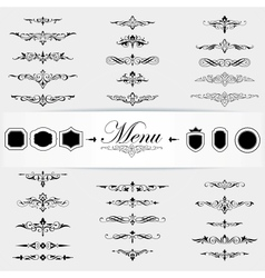Calligraphy design elements page decoration vector image