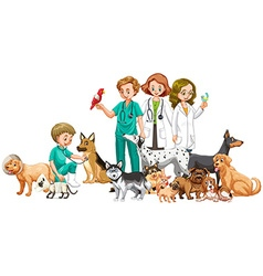 Vets and many animals vector image vector image