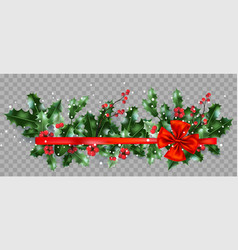 holly and ribbon on transparent background vector image