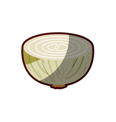 Light colors of middle onion in closeup with thick vector