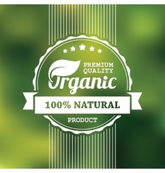 Organic product banner vector image