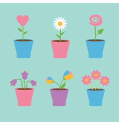 Set of six flowers in pots Blue background Card vector image