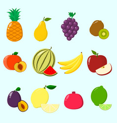 fruits a set of icons vector image