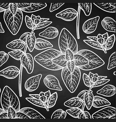 Graphic oregano pattern vector