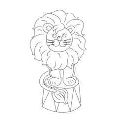 lion sitting in a circus arena outline vector image
