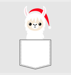 Llama alpaca sitting in pocket santa claus vector