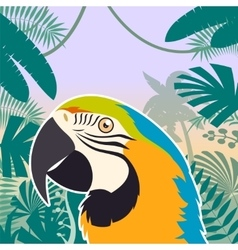 macaw on jungle background vector image