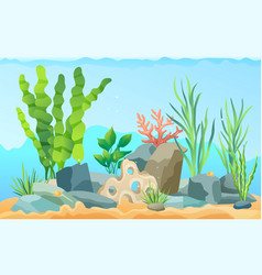 Seascape rocks and plants vector