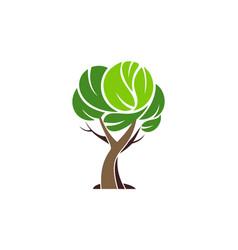 tree logo plant green icon vector image