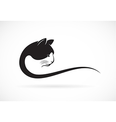 image of an cat face design on white background vector image