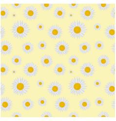 botanicals pattern chrysanthemum flower background vector image