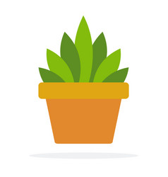 Indoor green plant in a pot flat isolated vector