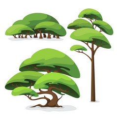 set cartoon stylized tree and bush vector image