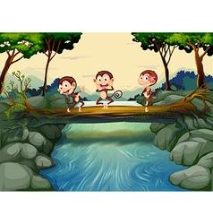 Three monkeys crossing the river vector