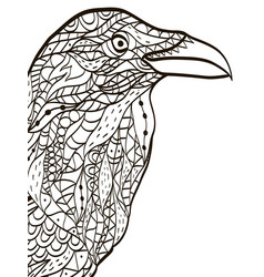Bird head raven coloring book for adults vector