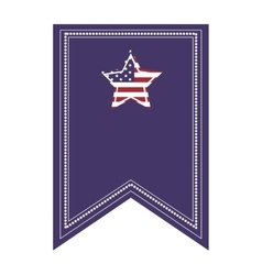 Flag icon with american star vector