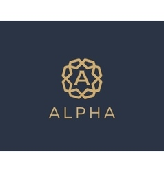 Premium letter A logo icon design Luxury vector image
