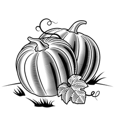 Retro pumpkins black and white vector