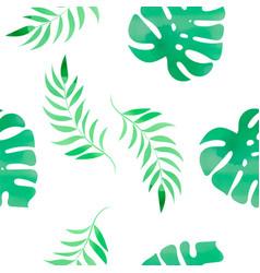 tropical monstera floral color watercolor vector image