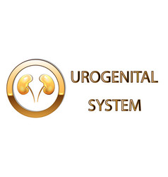 urogenital systemkidneys symbol sign stylized vector image vector image