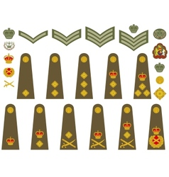 British Army insignia vector image