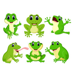 Collection of the pretty green frogs vector