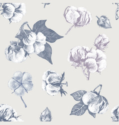 cotton seamless pattern vector image