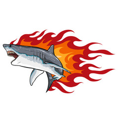 Danger shark with flames for tattoo or mascot vector