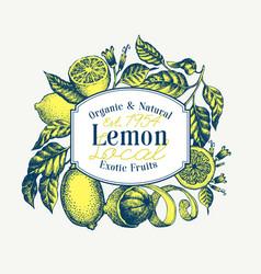 lemon tree logo template hand drawn fruit vector image