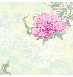 peony illustration vector image