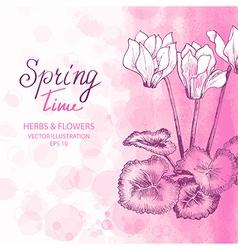 Pink Cyclamen Greetings Card vector image