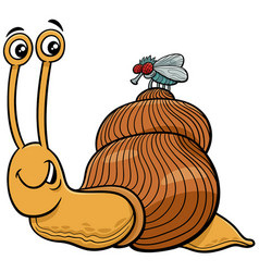 Snail and fly characters cartoon vector
