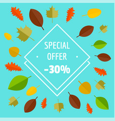special offer autumn sale limited background flat vector image