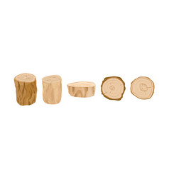 Tree stumps and logs set vector
