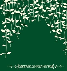 Vine leaves vector