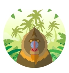 Mandrill on the Jungle Background vector image vector image