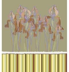 Decorative pattern invitation with Iris flowers vector image