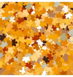 Background with maple autumn leaves EPS 10 vector image