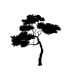 Black silhouette african tree isolated image vector