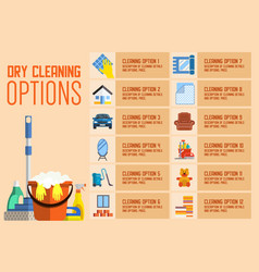Dry cleaning options flat vector
